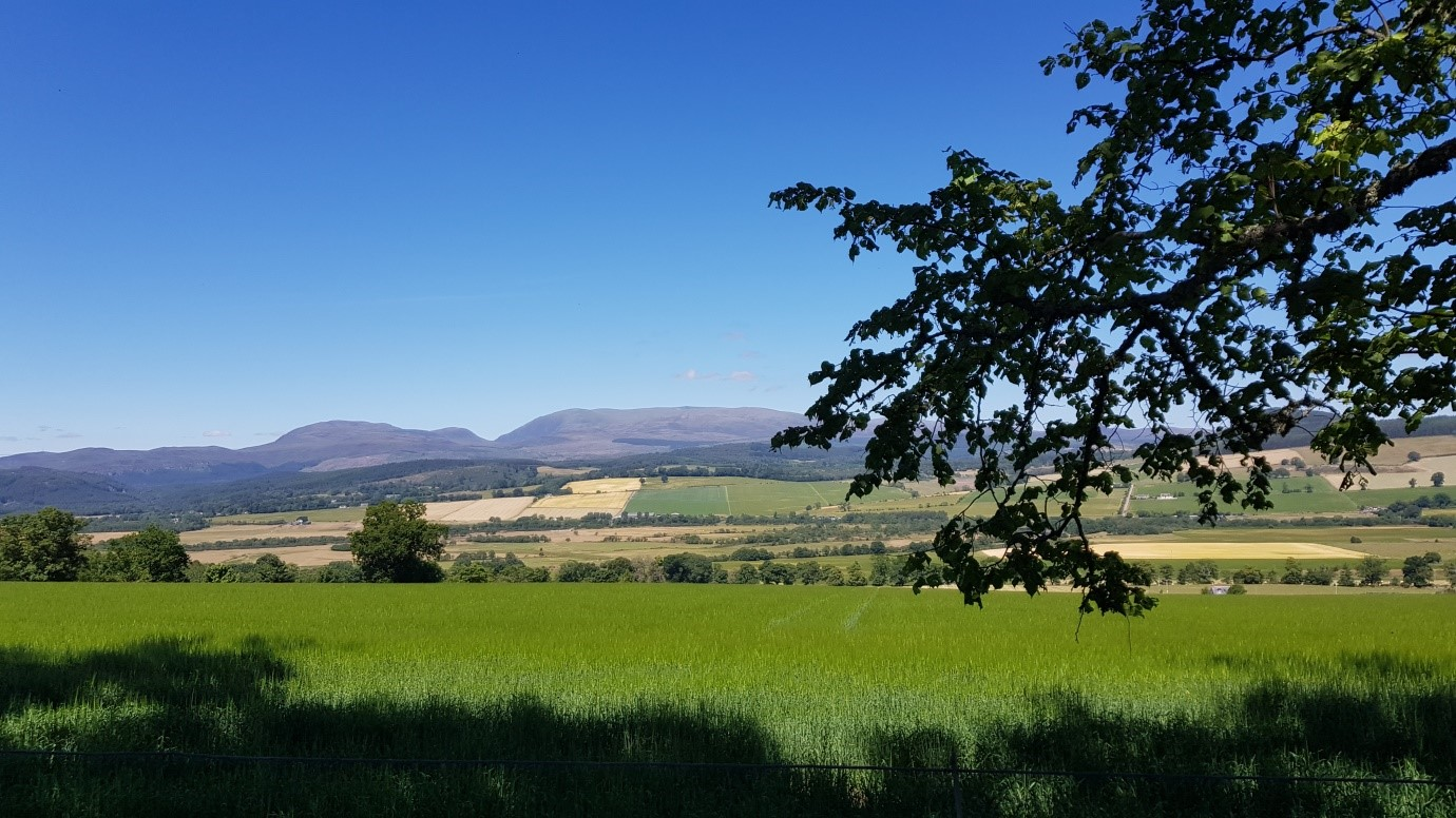 View of Ben Wyvis, near Dingwall